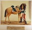 Kaisergarde - Dragoner der Kaiserin (Dragoner in Großer Uniform zu Pferd)