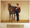 Artillerie - Artillerie zu Pferd (Kanonier)